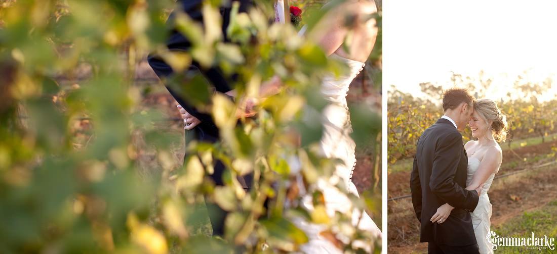 gemma-clarke-photography_bimbadgen-wedding_hunter-valley-wedding_paul-and-dee_0023