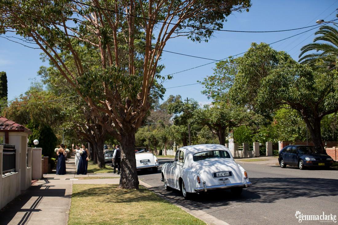 gemma-clarke-photography_botanic-gardens-wedding-reception_amanda-and-dylan_0012