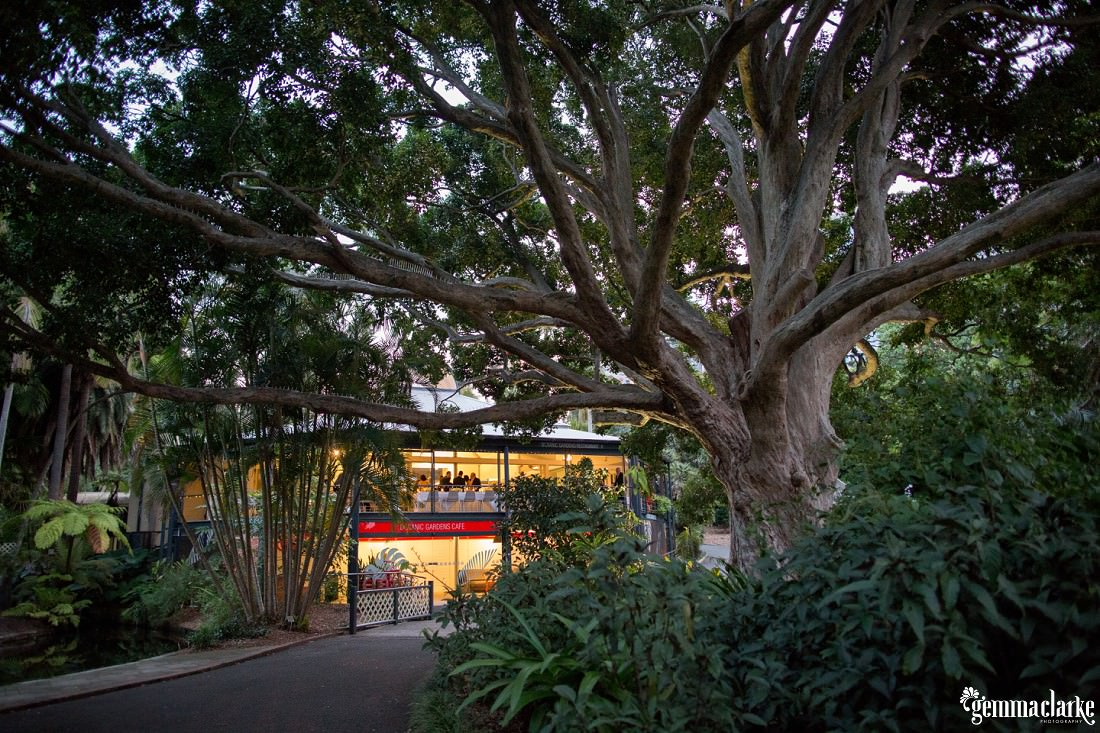 gemma-clarke-photography_botanic-gardens-wedding-reception_amanda-and-dylan_0055