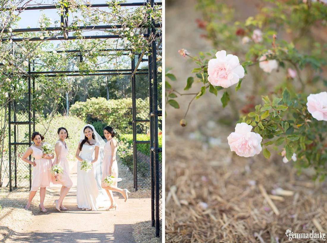 gemma-clarke-photography_parramatta-park-wedding-photos_old-government-house-reception_kamille-and-sam_0038