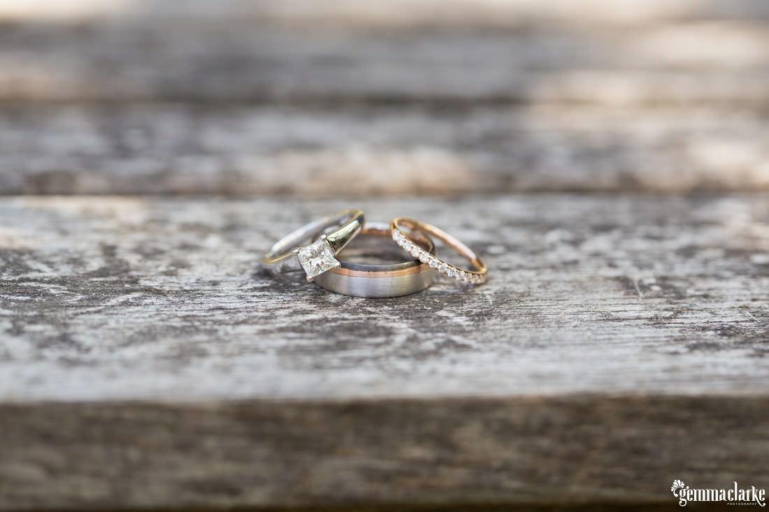 gemma-clarke-photography_southern-highlands-wedding_biota-dining-wedding_ashley-and-hally_0005