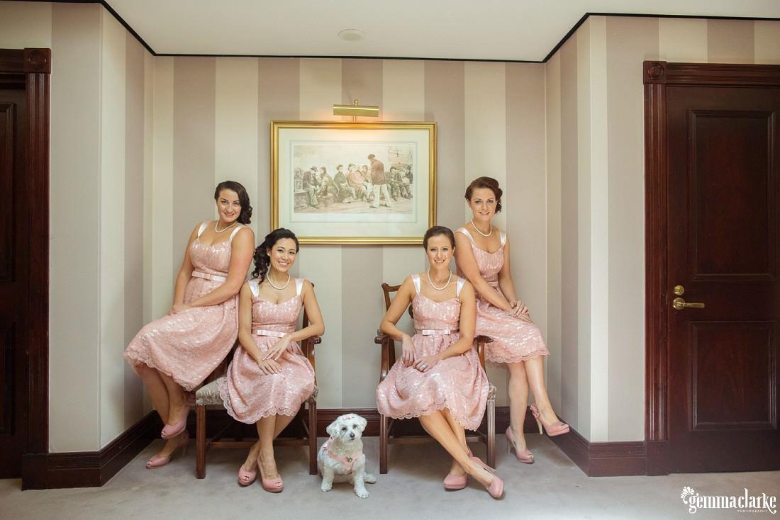 gemma-clarke-photography_watsons-bay-wedding_dog-bridesmaid_kristyl-and-ben_0021