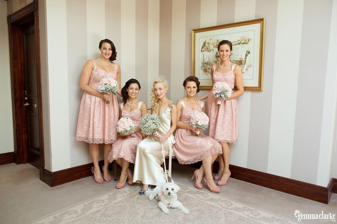 gemma-clarke-photography_watsons-bay-wedding_dog-bridesmaid_kristyl-and-ben_0030