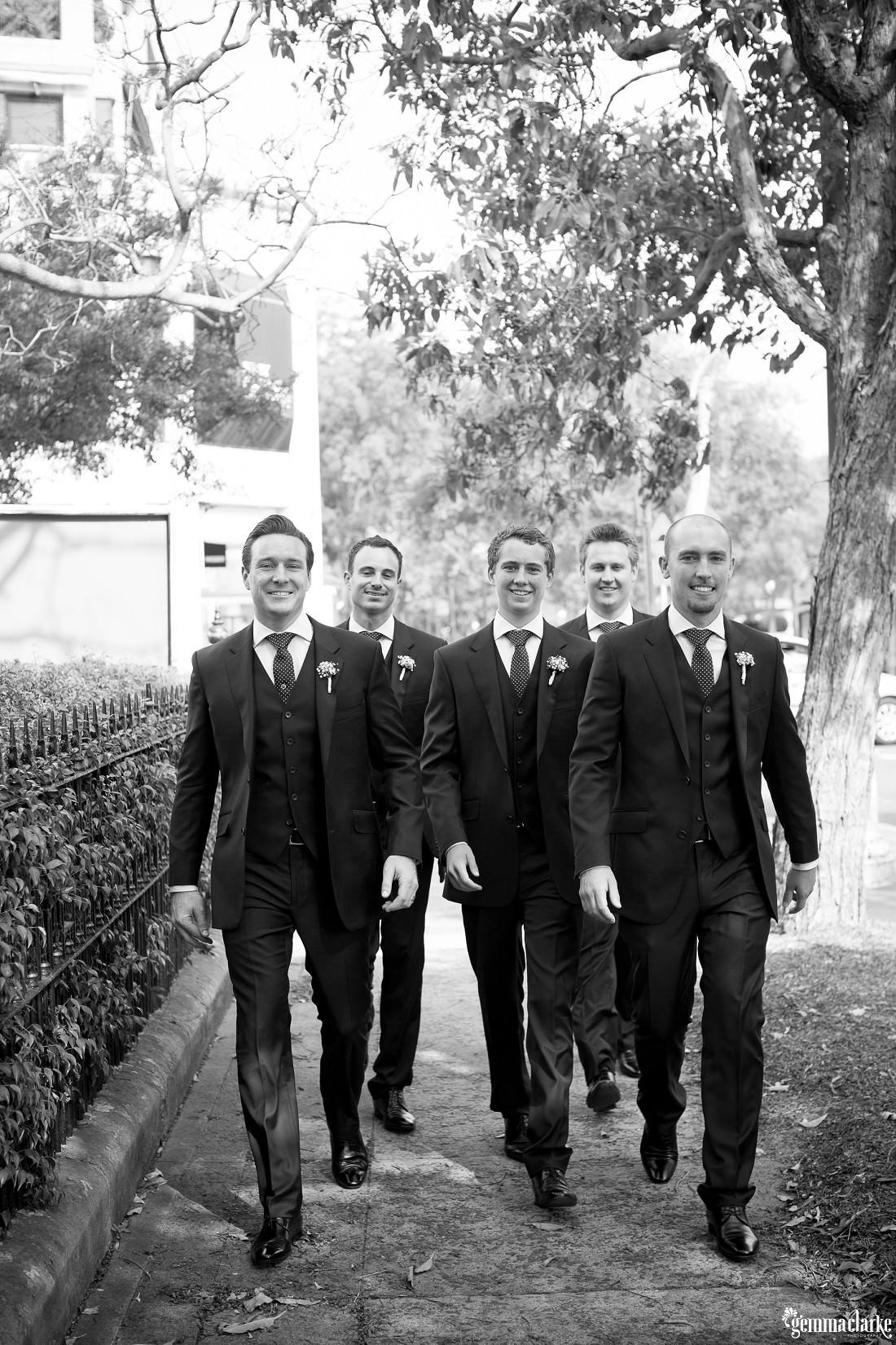gemma-clarke-photography_watsons-bay-wedding_dog-bridesmaid_kristyl-and-ben_0050