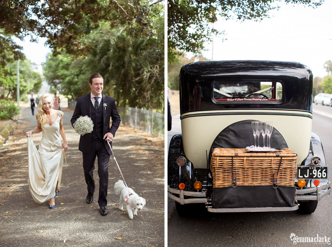 gemma-clarke-photography_watsons-bay-wedding_dog-bridesmaid_kristyl-and-ben_0056