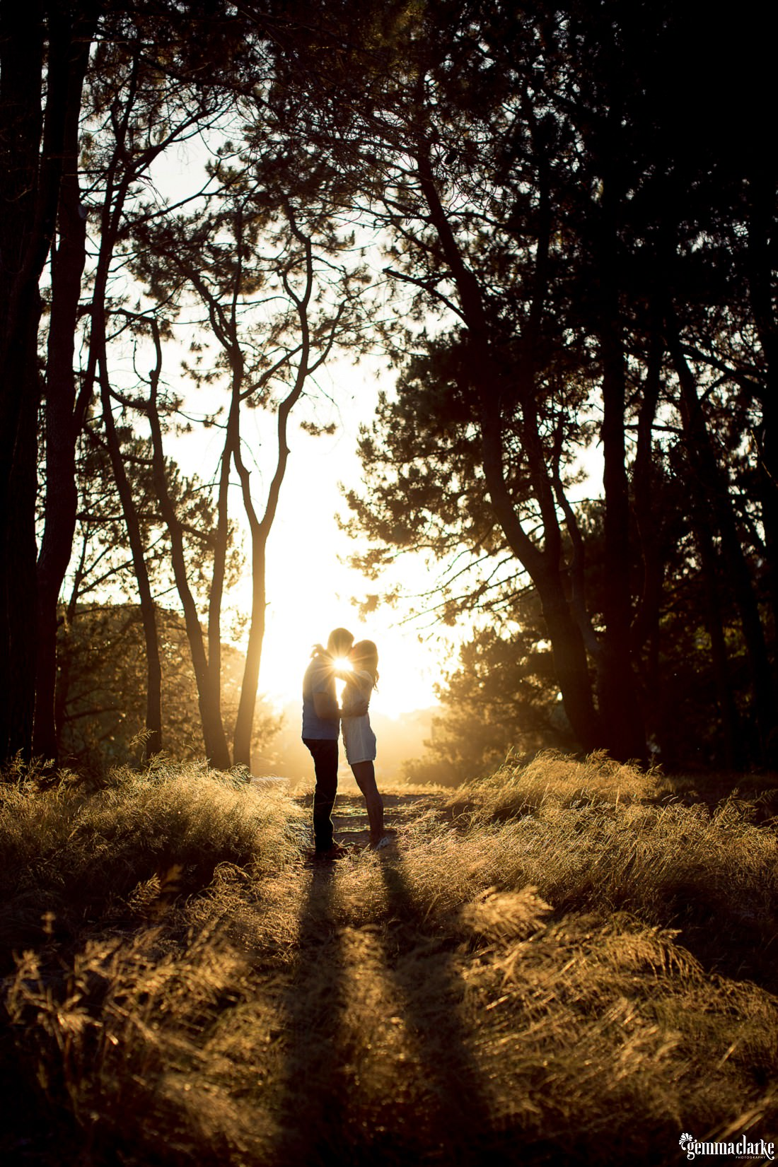 A silhouette of a couple in a pine forest and the sun is rising and it is peaking through as they kiss. Beautiful warm colours in these Centennial Park Engagement photos