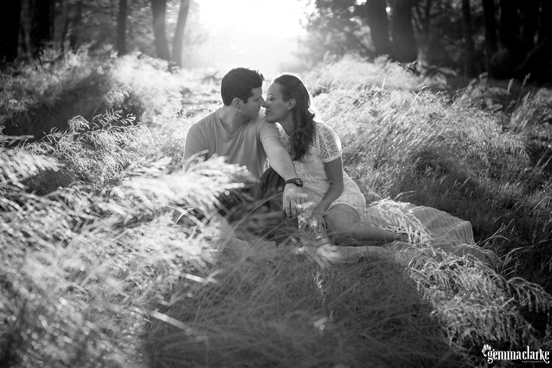 Black and white colouring with a couple sitting amongst the long grass as the sun streams in from behind them and they kiss at their Centennial Park Engagement Photos