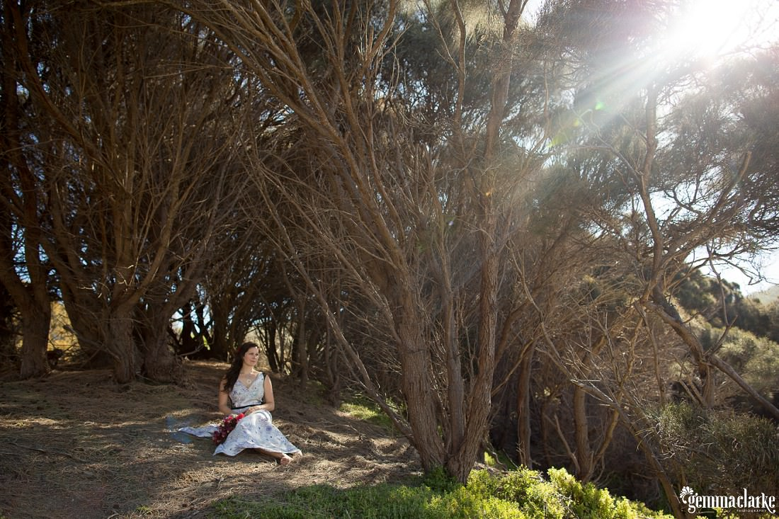 A bride sits amongst trees with sunlight streaming in at Bluestone Bay in Tasmania