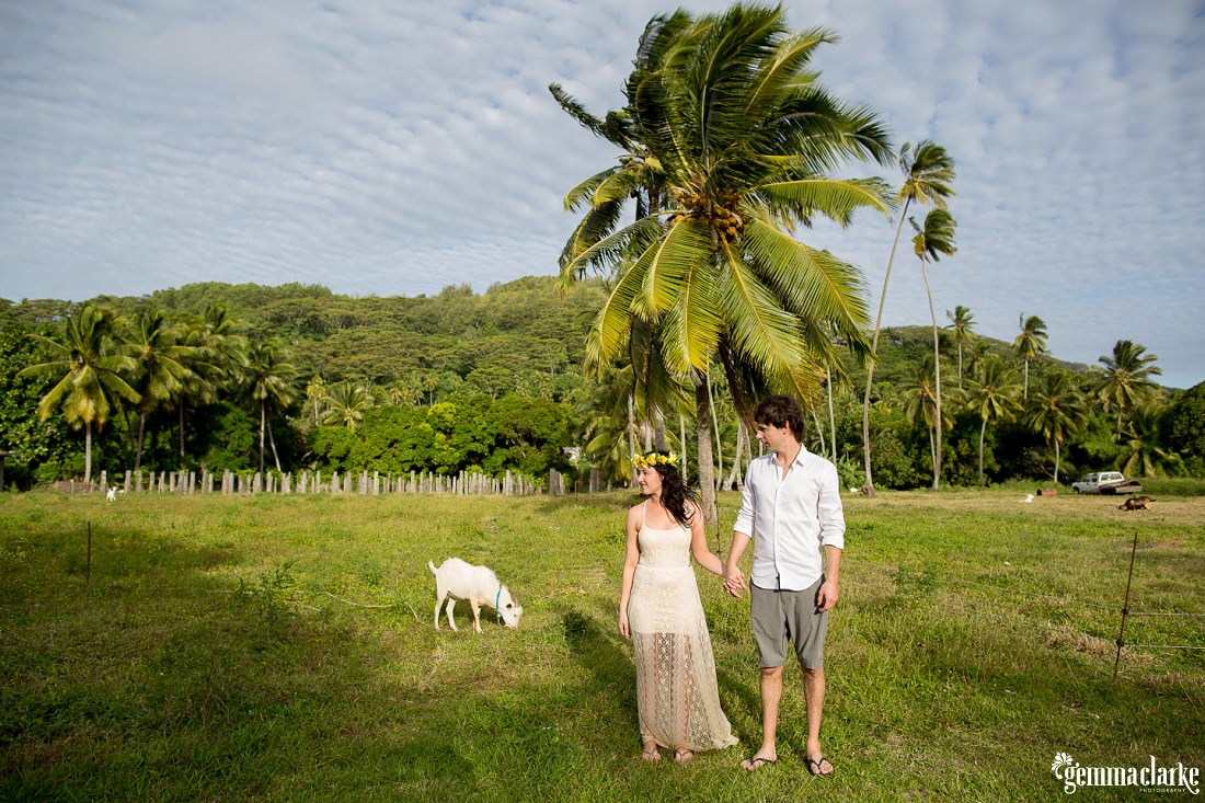 Couple holding hands in front of a big palm tree and the lush green mountains in the background. There is also a stray goat walking around, portraits in Paradise.