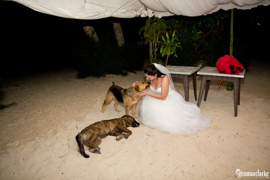 gemmaclarkephotography_south-pacific-destination-wedding_island-wedding_natalie-and-alex_0088