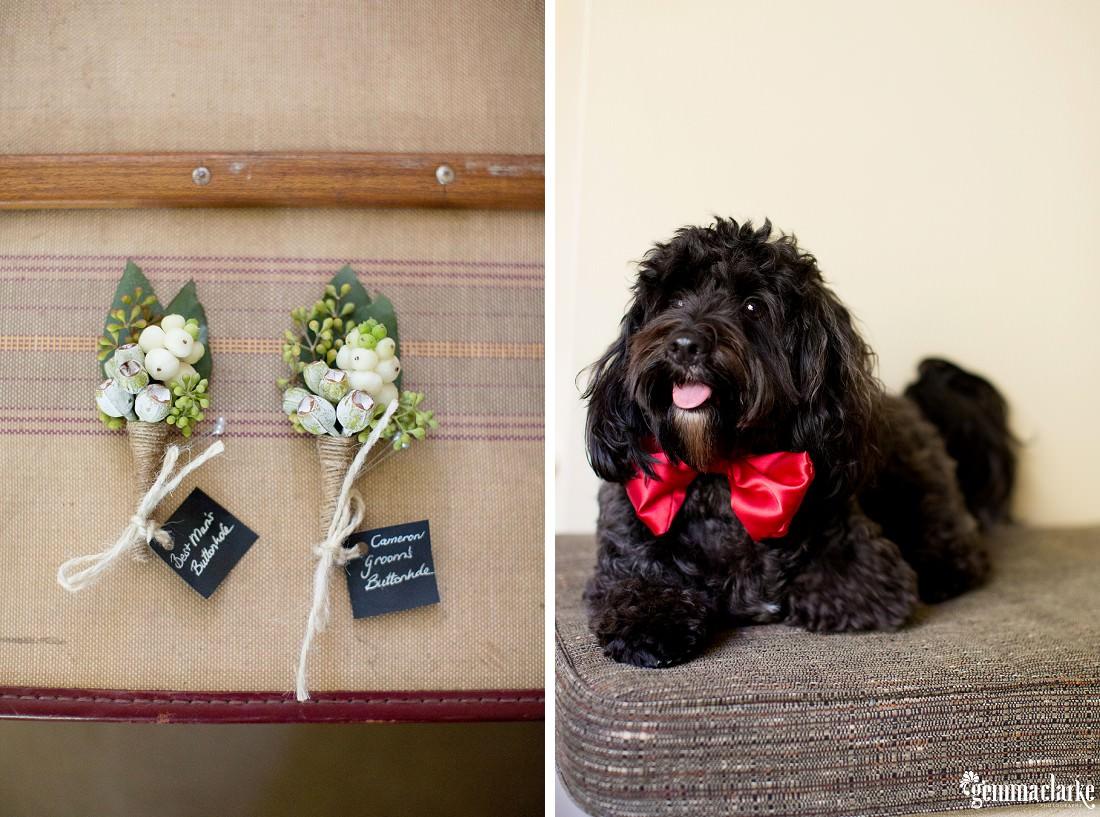 gemmaclarkephotography_southern-highlands-wedding_bendooley-estate_leyla-and-cam_0095
