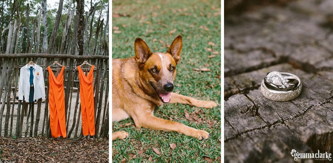 gemma-clarke-photography_kangaroo-valley-wedding_kangaroo-valley-bush-retreat_zoe-and-cam_0004