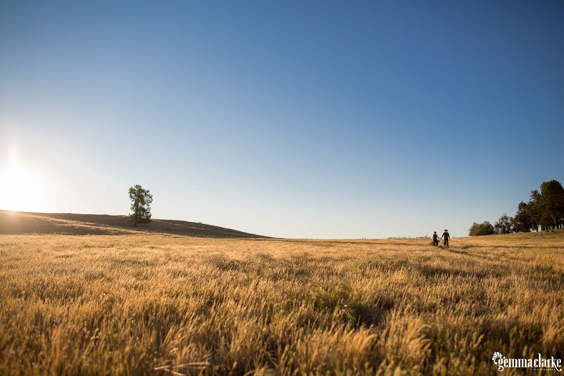 A man and woman holding hands and walking through a grassy field as the sun begins to set - Sunset Farm Portraits