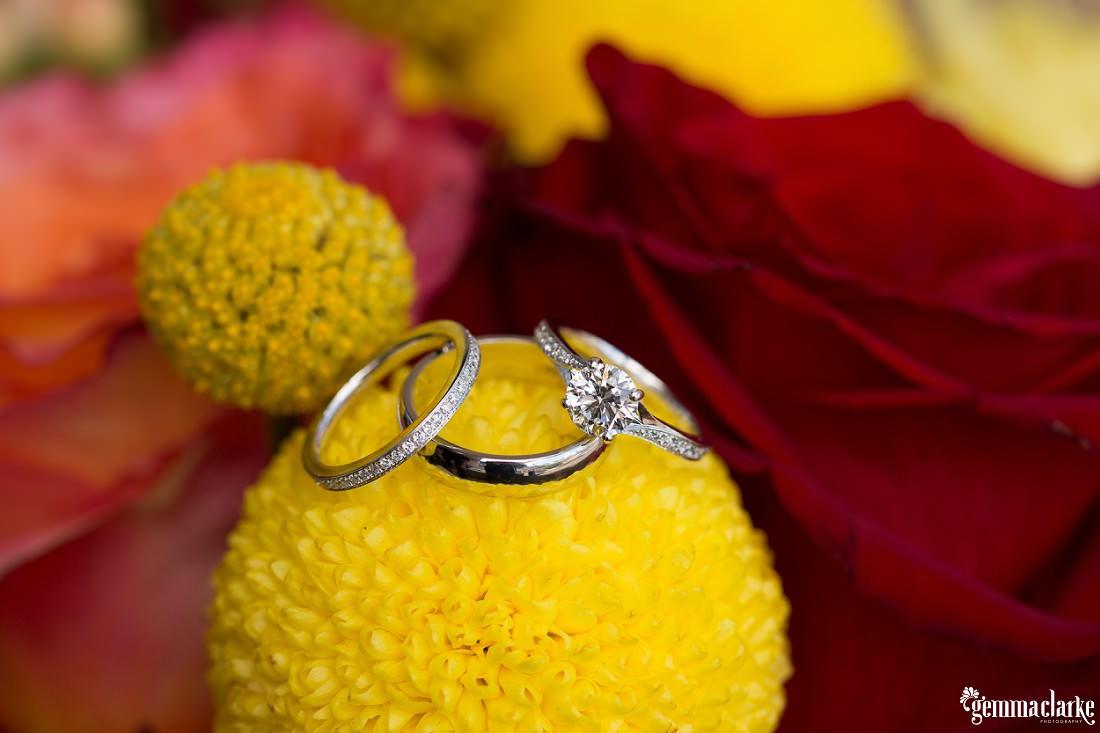 gemmaclarkephotography_fun-sydney-wedding_italian-village-reception_tina-and-thomas_0003