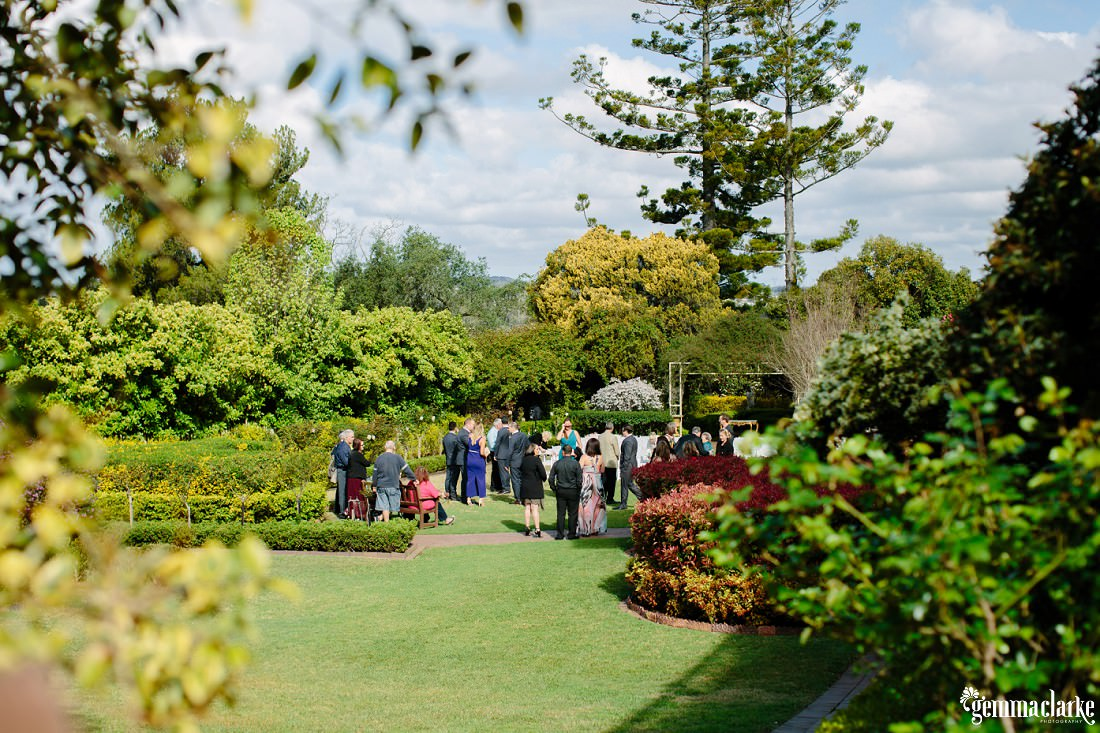 Wedding guests mingling in a garden before the ceremony begins