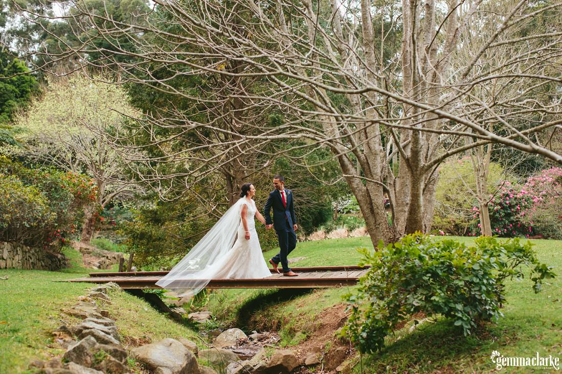 A bride and groom walk on a small wooden bridge over a creek under a large naked tree