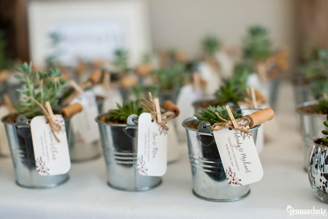 Plants in small metal buckets with name tags as gifts for wedding guests