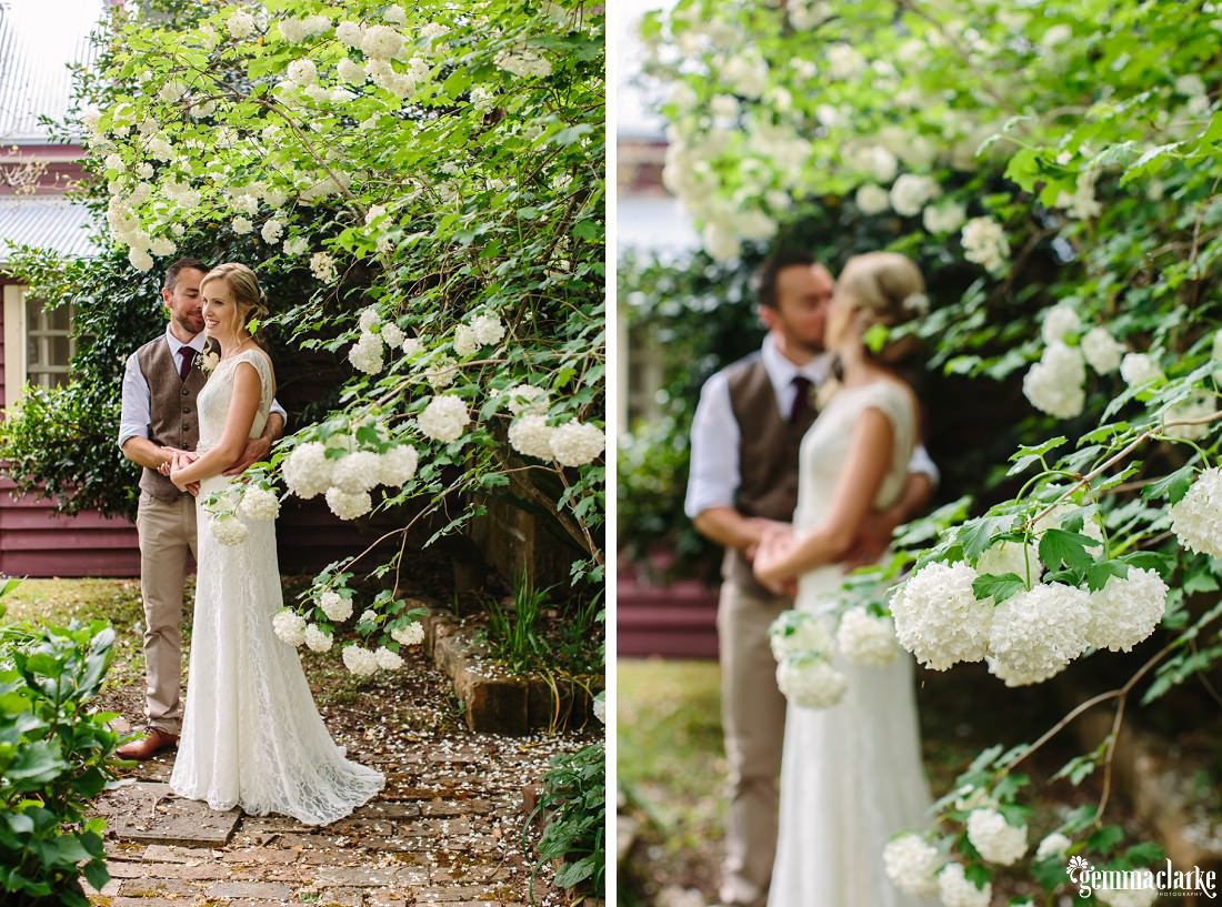 A bride and groom embrace underneath a tree covered in white flowers