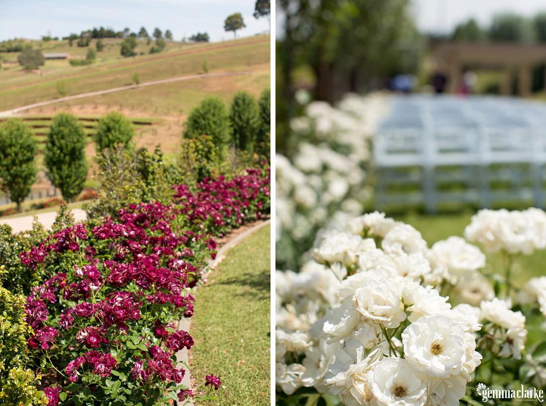 gemmaclarkephotography_sheldonbrook-wedding_country-wedding_lauren-and-mitchell_0018