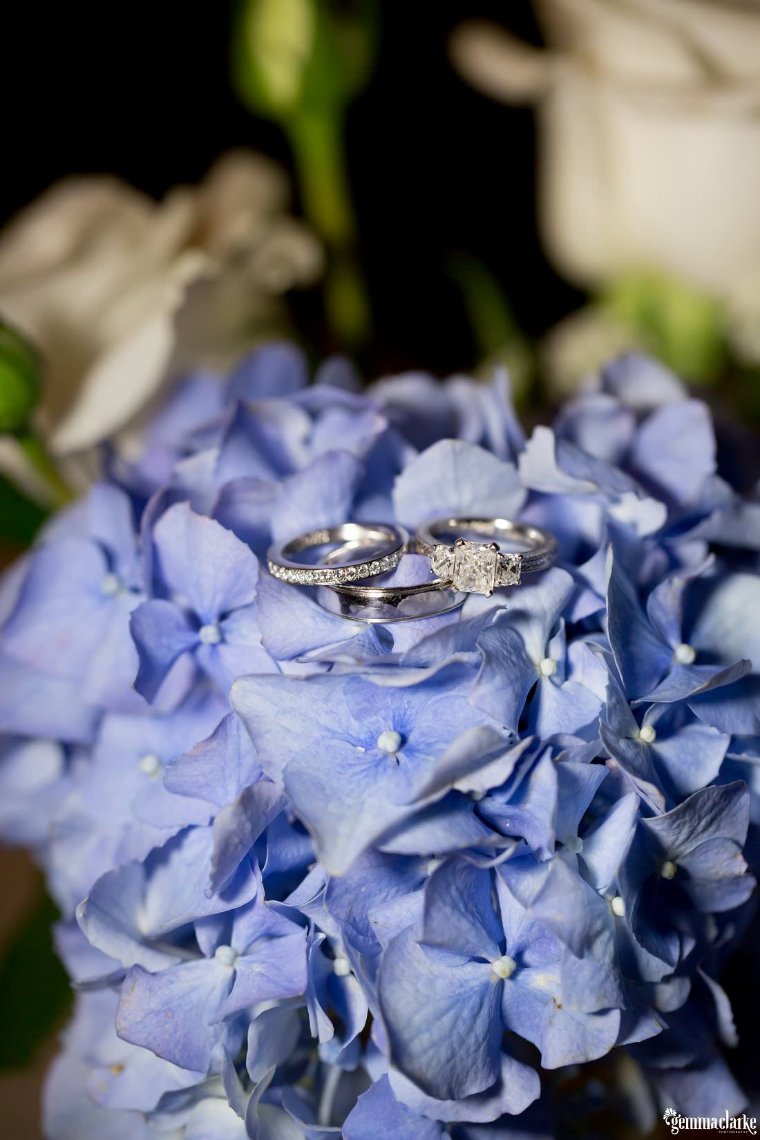 Wedding and engagement rings on a purple flower
