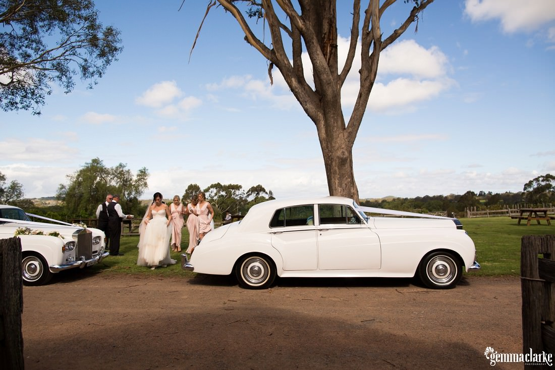 A bride and bridesmaids walking near white wedding cars