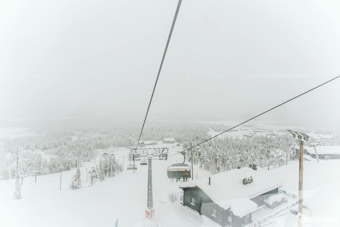 A snow covered forest as seen from a ski lift
