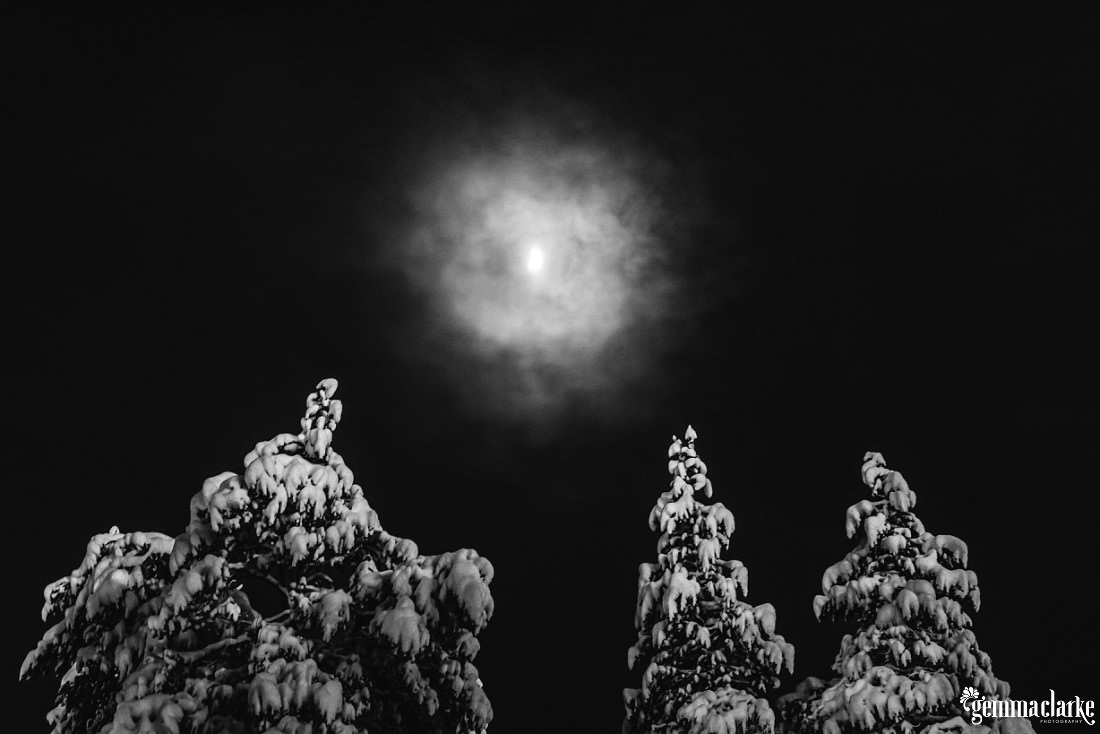 The moon glows through clouds over snow covered trees