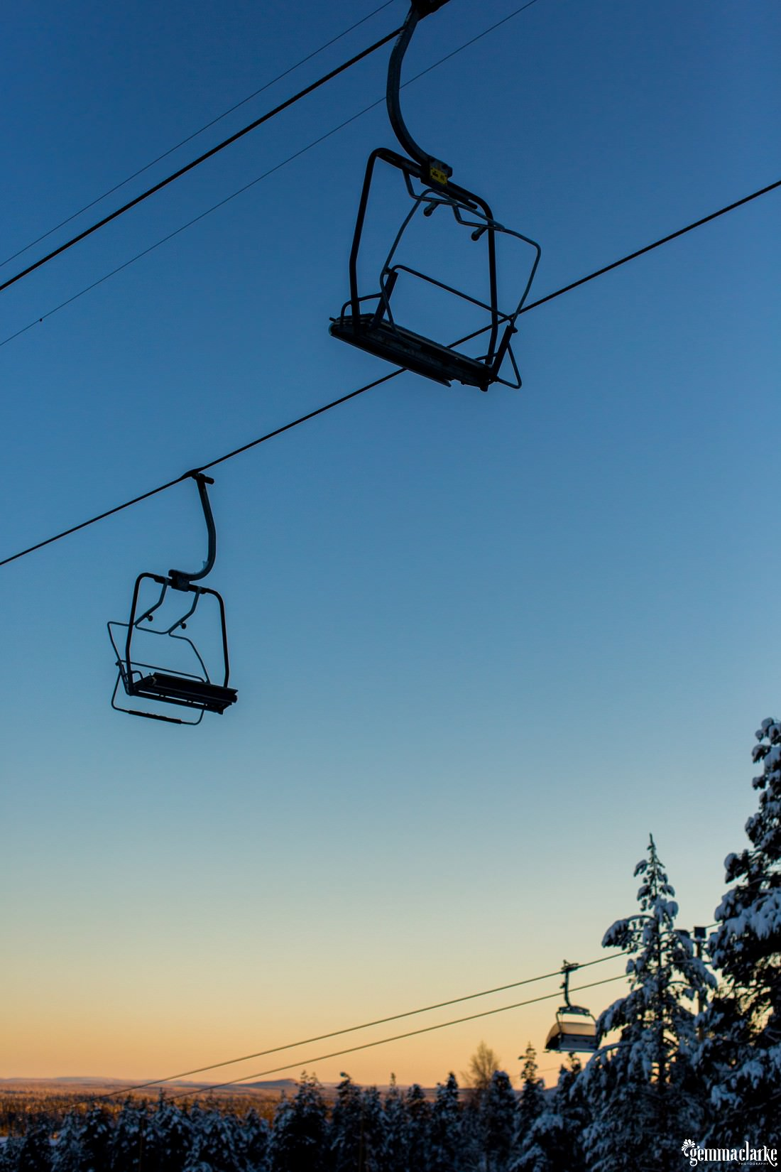 A ski lift and snowy trees