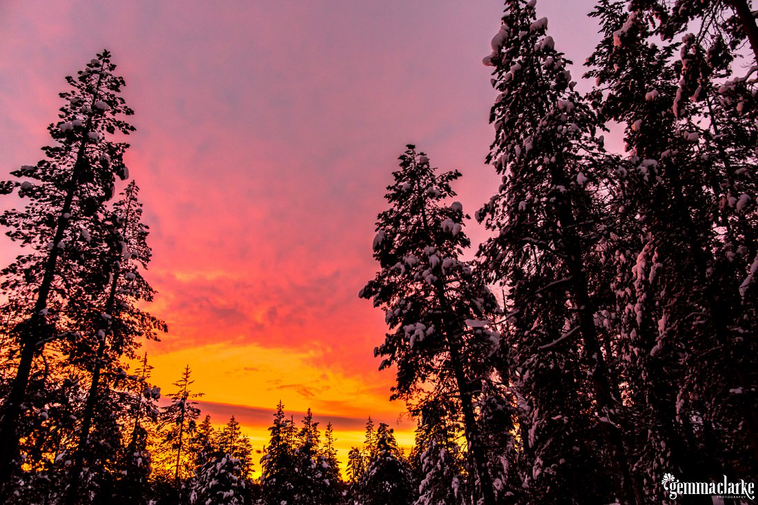 A bright orange and pink sunset shines through the clouds over a snowy forest
