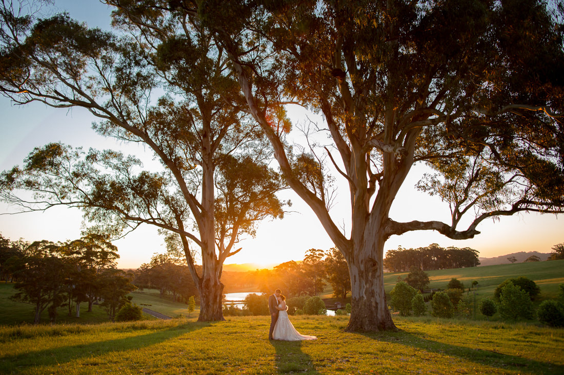 Tahnae and James Colourful Country Mali Brae Farm Wedding – Fitzroy Falls, Southern Highlands – Gemma Clarke Photography