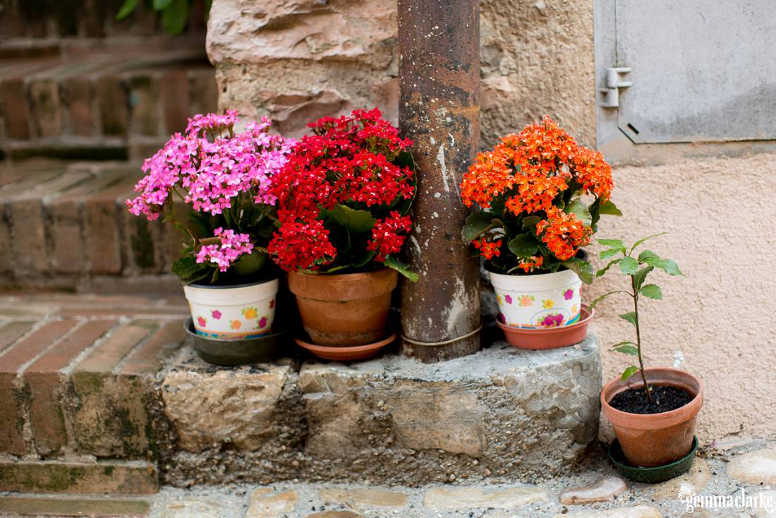 gemmaclarkephotography_spello_flower_festival_photos_0003