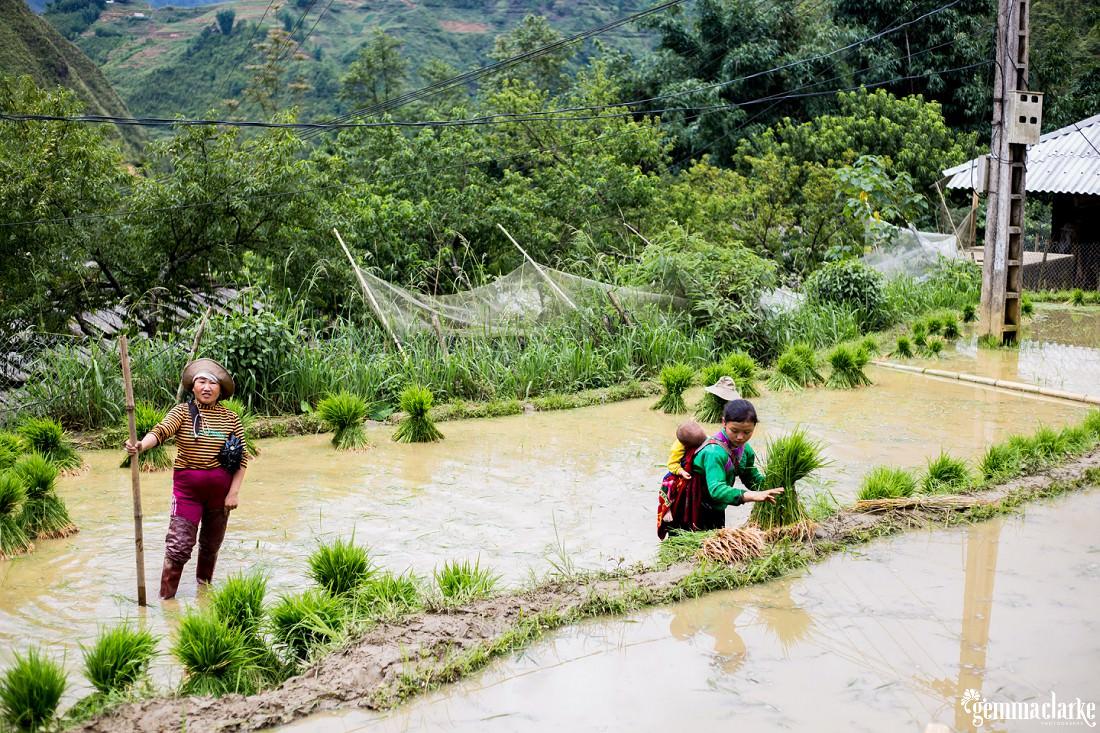 gemmaclarkephotography_sapa-vietnam_homestay-trek-0011