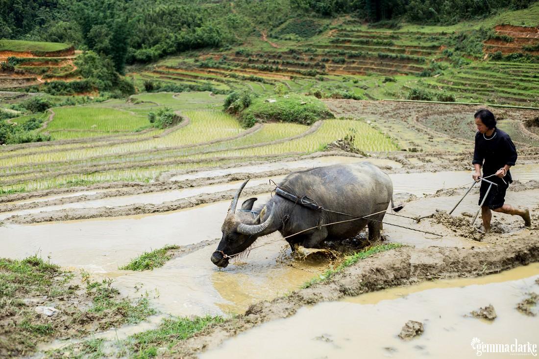 gemmaclarkephotography_sapa-vietnam_homestay-trek-0024