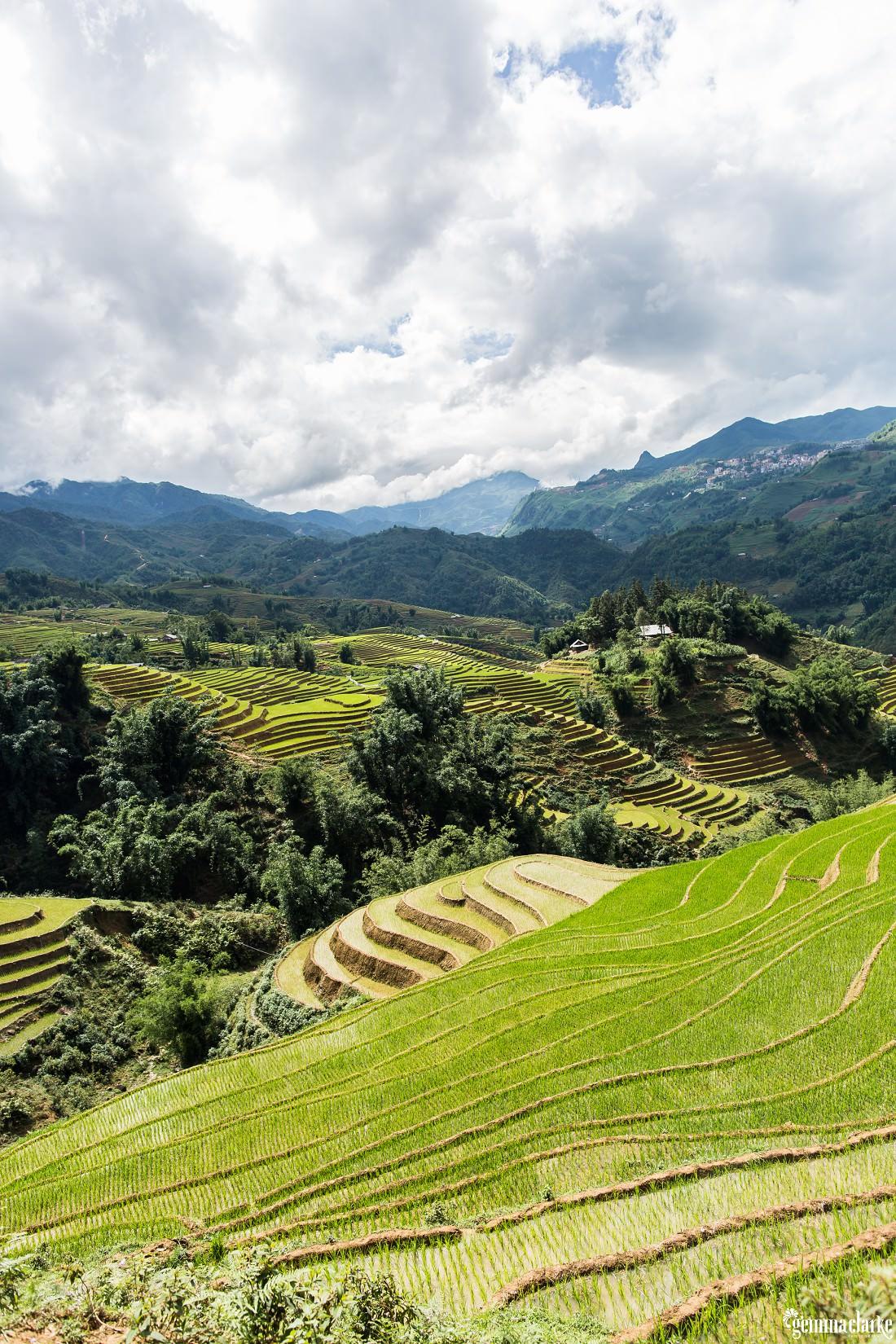 gemmaclarkephotography_sapa-vietnam_homestay-trek-0038