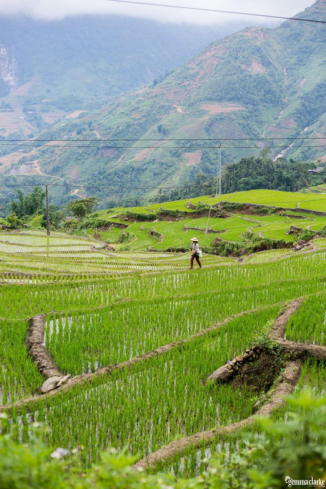 gemmaclarkephotography_sapa-vietnam_homestay-trek-0073