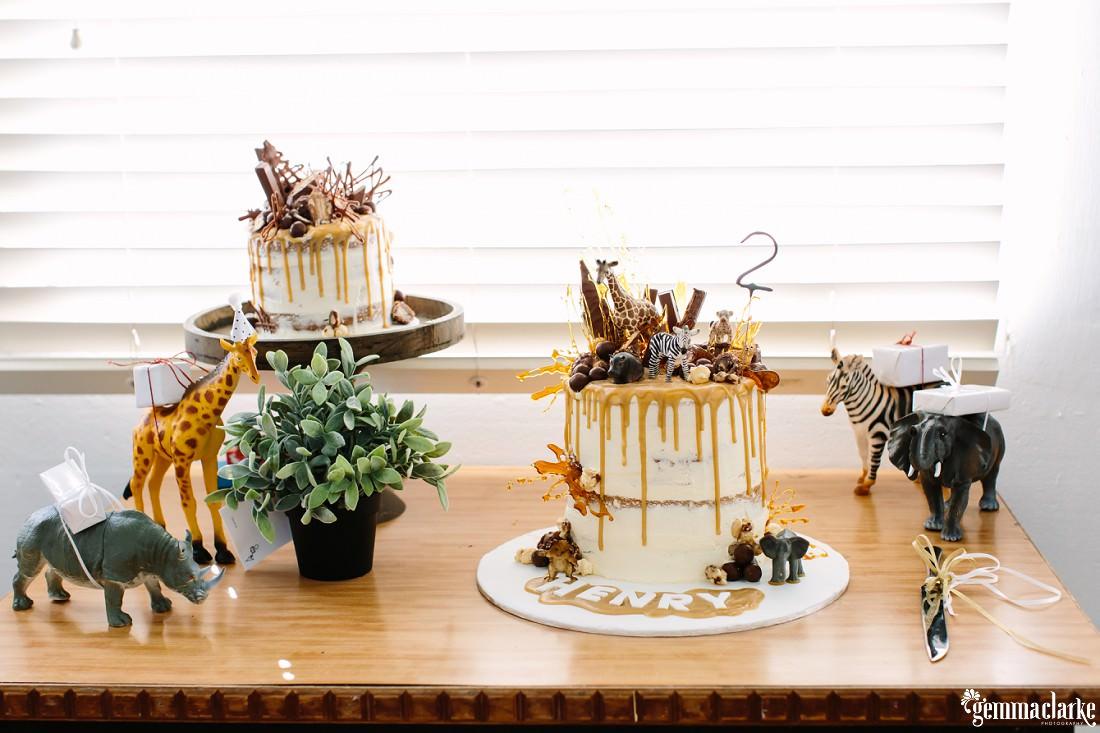 Animal Themed Birthday Party With Cake Smash And Crocodiles