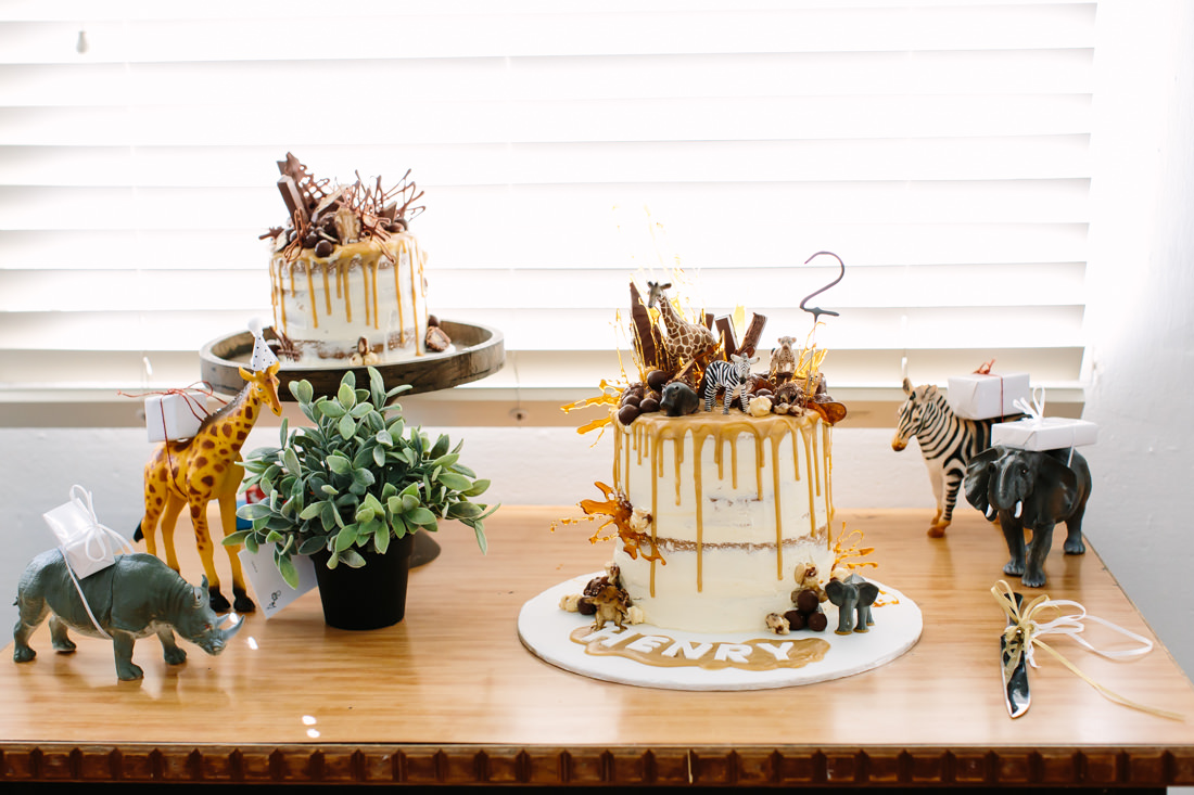 Animal Themed Birthday Cake with Frosting and dripping Caramel