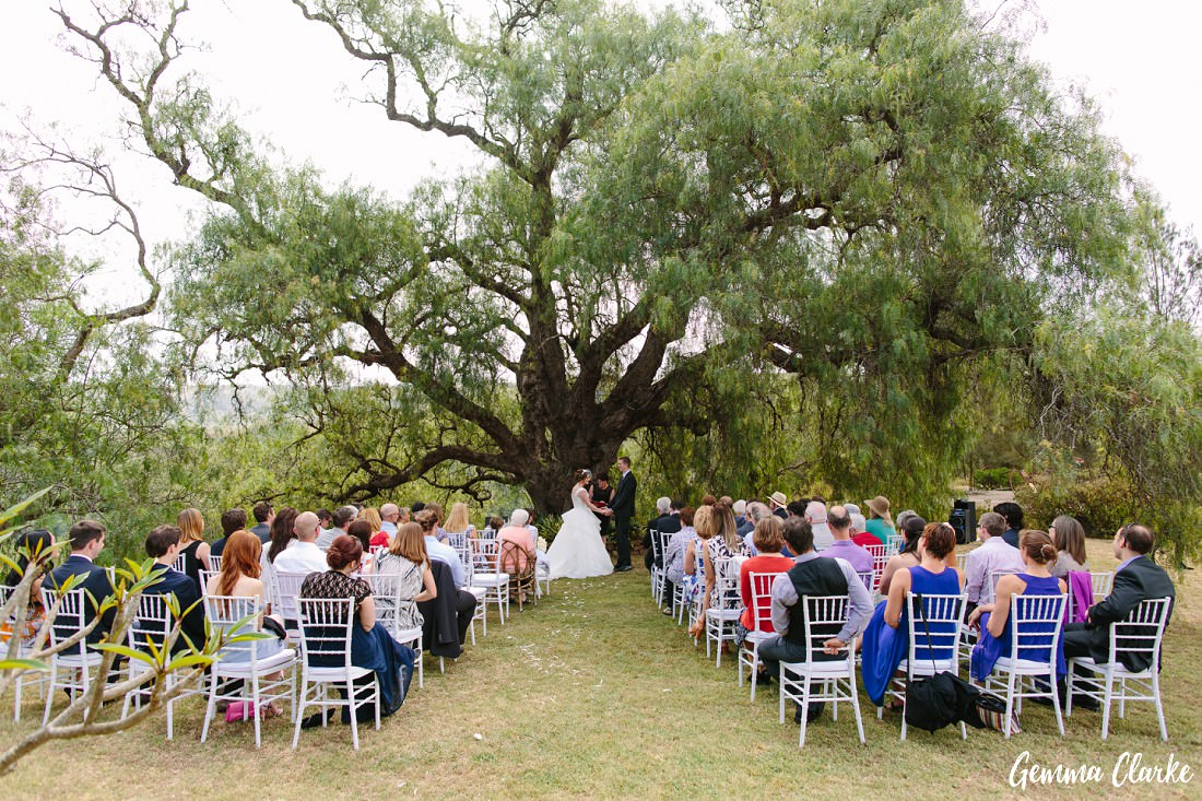 Ceremony under a big Pepper Tree with guests on white chairs and the bride and groom at the end of the aisle holding hands at this Pepper Tree Ridge Wedding