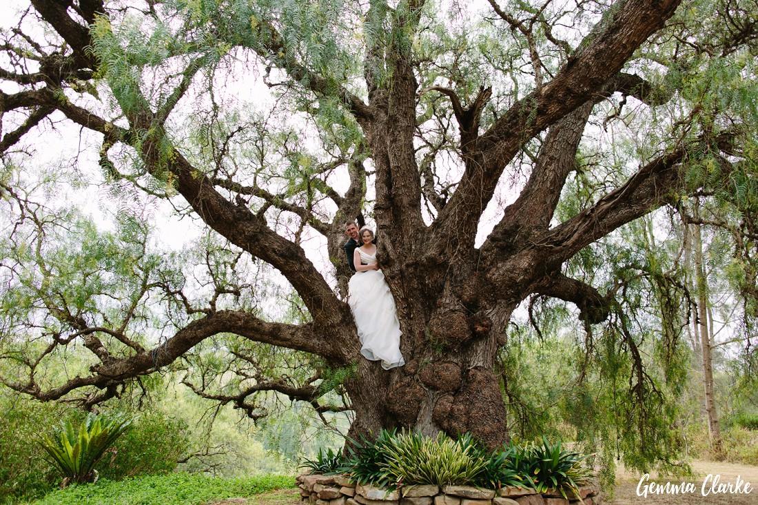 peppertree-ridge-wedding_razorback_gemma-clarke-photography-0067