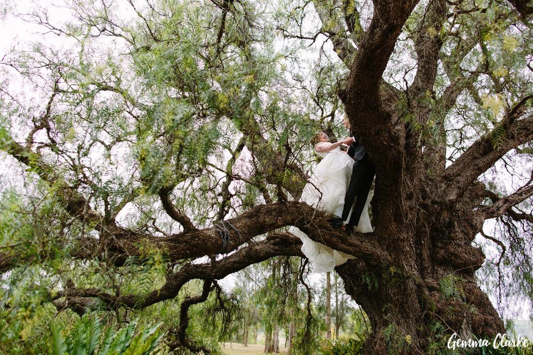 peppertree-ridge-wedding_razorback_gemma-clarke-photography-0069