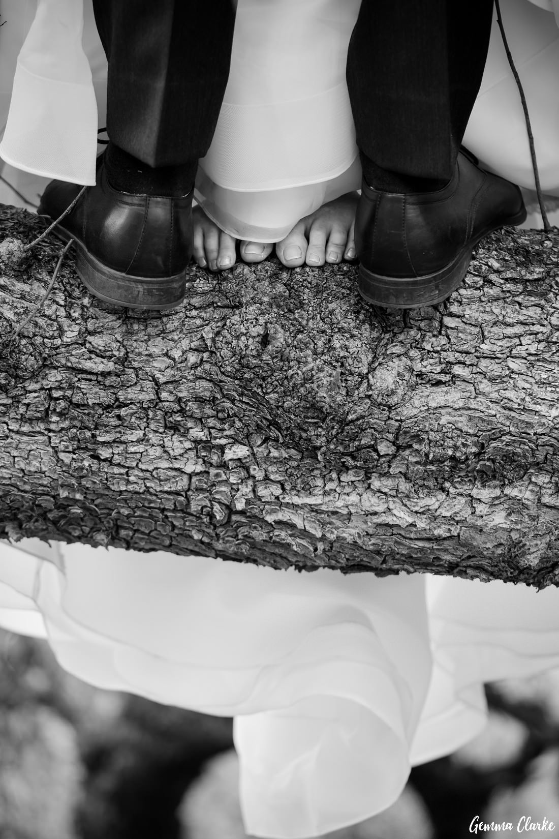 peppertree-ridge-wedding_razorback_gemma-clarke-photography-0071